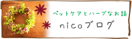 ハーブ&アロマ&ペットケア教室nicoのブログ